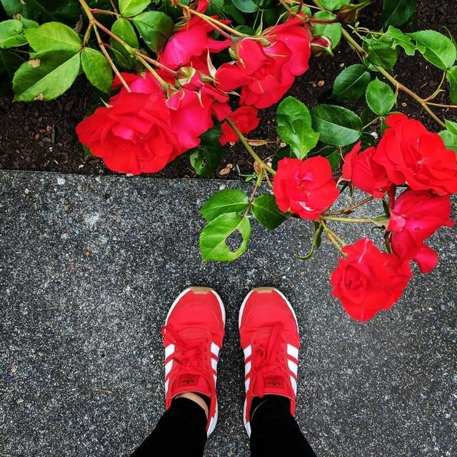 Perfect combo #iniki and #roses at my new alma mater #mystyle #spu #keeplearning #boostlife #ultraboost