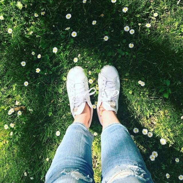 💚 #printemps #sun #verdure #pelouse #marguerite #paquerette #stansmith #levis