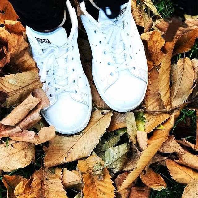 🎼 Where will my feet take me today? Nobody knows for sure But come for a walk I'll lead the way To places never seen before👟👟 #layas #makatingpaa  #autumn🍁 #dublinireland #emeraldisle #stephensgreen #stansmith #adidas