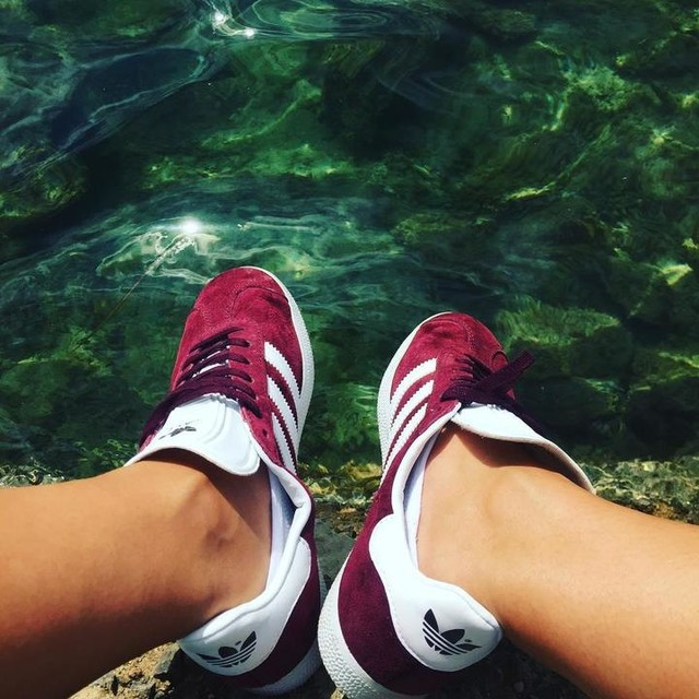 #tanned #adidas #gazelleadidas #gazelle #sea #clearwater
