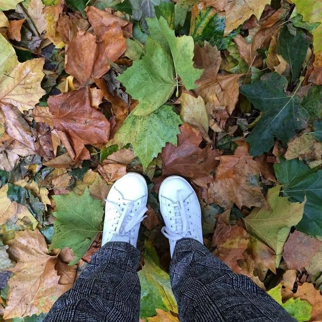 Autumn's here 🍁 #autumnwalk #adidas #stansmith